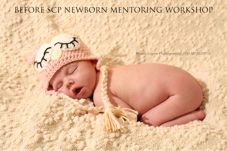 Scp newborn mentoring workshop a review stephanie cotta photography