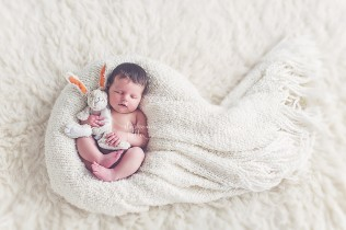 free newborn posing guide pdf