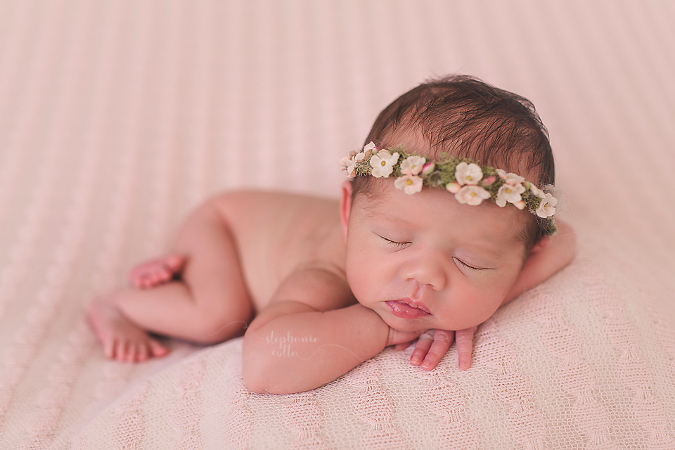 Introducing quinn st louis newborn photographer